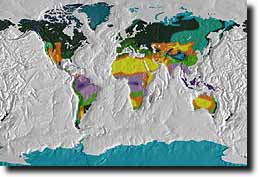 Earthshots world relief maps in 250 styles and effects earthshots is particularly useful to 3d animators who need texture maps to create rotating or spinning globes any of the world map earthshots images 2569 gumiabroncs Images